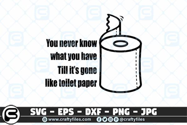 010 you never know what you have till it gone like toilet paper 3 2D You Never Know What You Have SVG