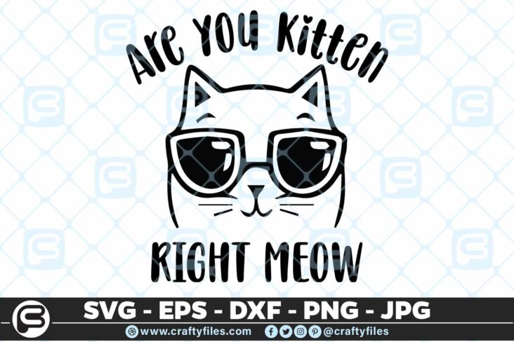 162 Are you ketten me right now 5 4D Are you ketten me right now cute cat SVG with sunglasses, PNG
