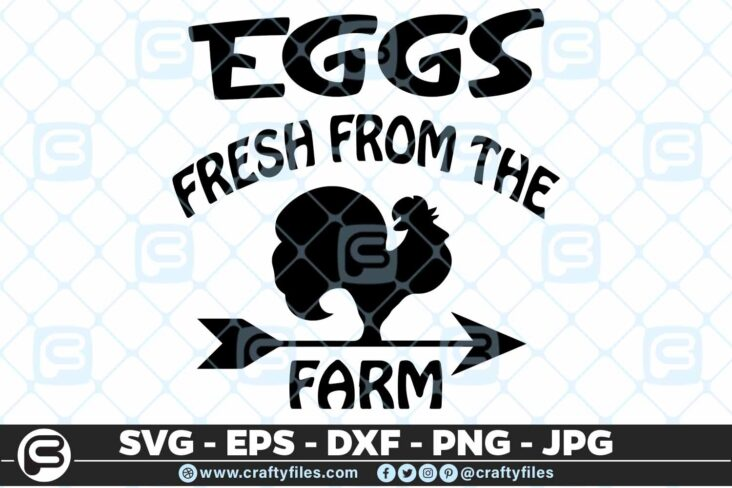 169 Chicken Egges frech 5 4D Eggs Fresh from the Farm, Chicken Eggs SVG DXF