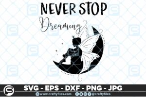 171 Never stop dreaming Fairy 5 4D Home