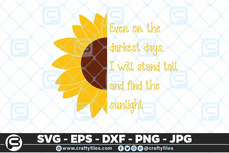 237 Sunflower sunlight Stand tall in darkness 3 2D Sunflower SVG Even On The Darkest Days I Will Stand Tall PNG