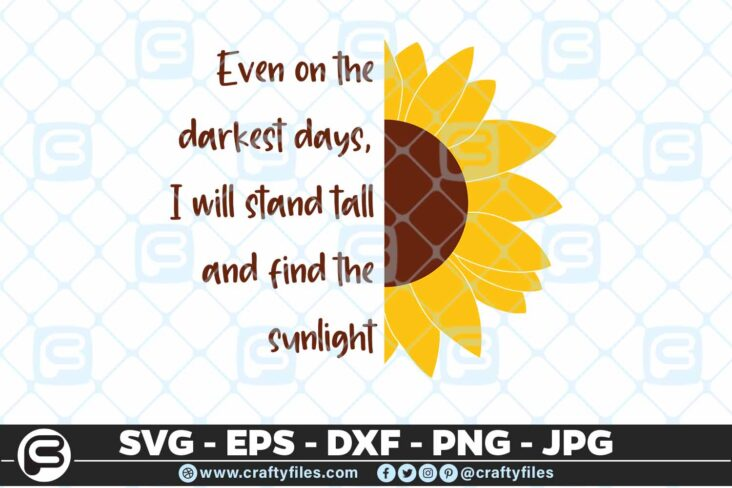 238 Sunflower sunlight Stand tall in darkness 3 2D Sunflower SVG Even On The Darkest Days I Will Stand Tall PNG